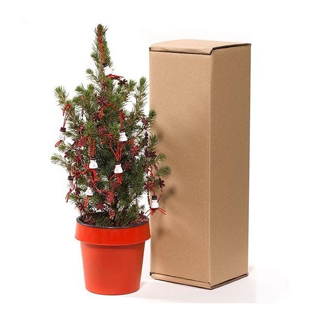 Bureau kerstboompje in verzendverpakking