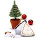 Kerstboomblik kweekset