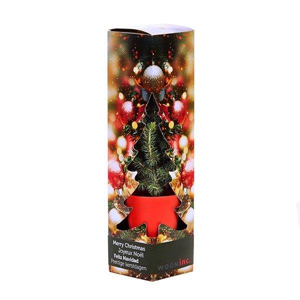 Kerstboom in geschenkdoos 3