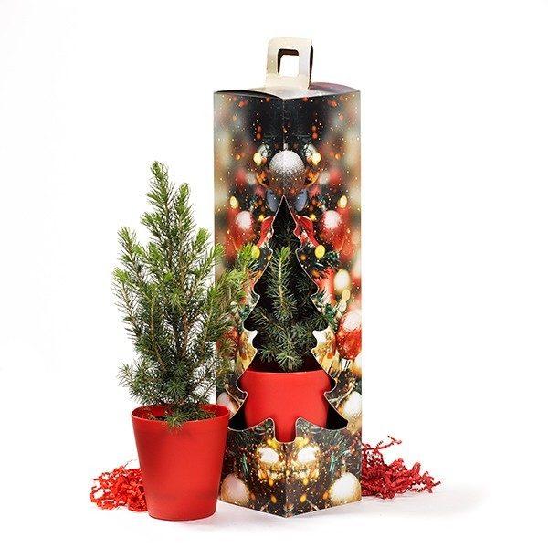 Kerstboomdoos kerstboom